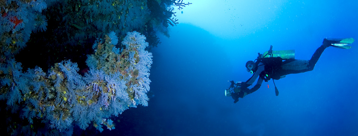 fiji diving holidays