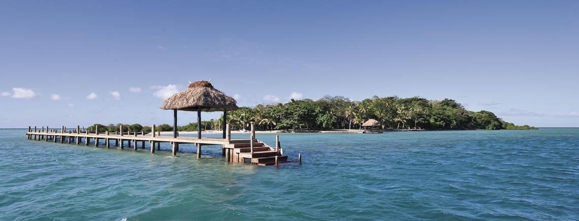 private islands in fiji dolphin