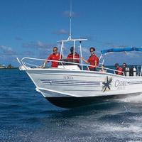 castaway island resort fiji diving