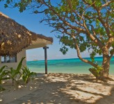 Castaway Island Resort Fiji – Beachfront Bure