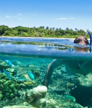 Vomo Resort Fiji Diving