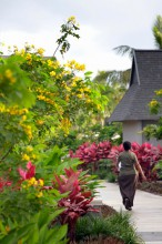 InterContinental Resort Fiji – Gardens