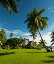 Paradise Taveuni Resort – Gardens