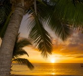 Castaway Island Resort Fiji – Sunset
