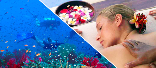 jean-michel-cousteau-resort-fiji-dive-holiday