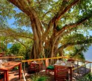 Royal Davui Island Resort – Restaurant