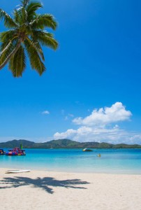 Plantation Island Resort – Beach & Water Park