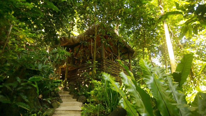 travel review qamea resort jungle spa