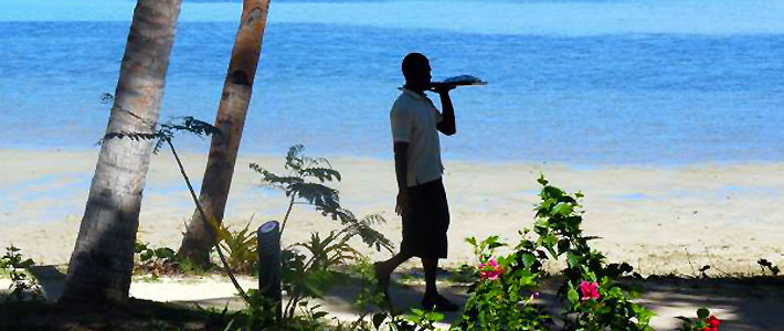 tropica island resort bula butlers