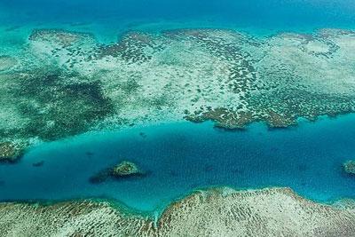 castaway island fiji diving