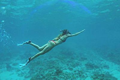 castaway island fiji snorkelling