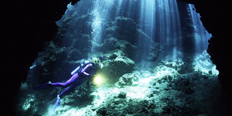 diving savusavu fiji
