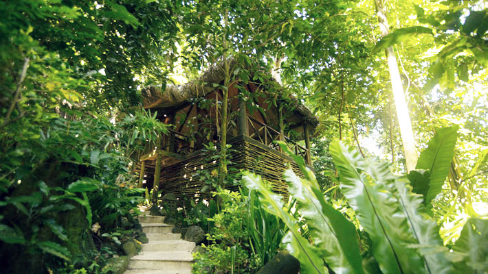 travel review qamea resort jungle spa